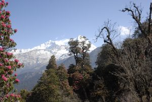 View from Tadapani, Annapurna Trekking