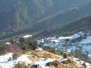 Snow fall on Ghorepani, Annapurna.