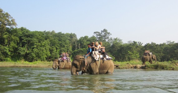 chitwan-national-park-5-days
